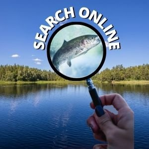 Research New Fishing Spots Online