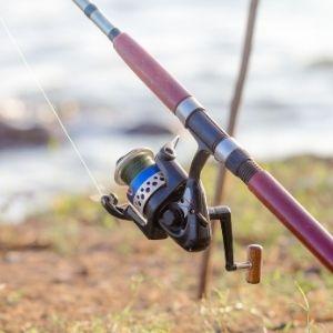Lower Priced Daiwa Samurai Fishing Poles