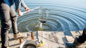 Do Not Mistreat Your Fish Off Fishing