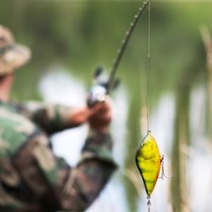 Increase Your BaitCasters Accuracy Tips
