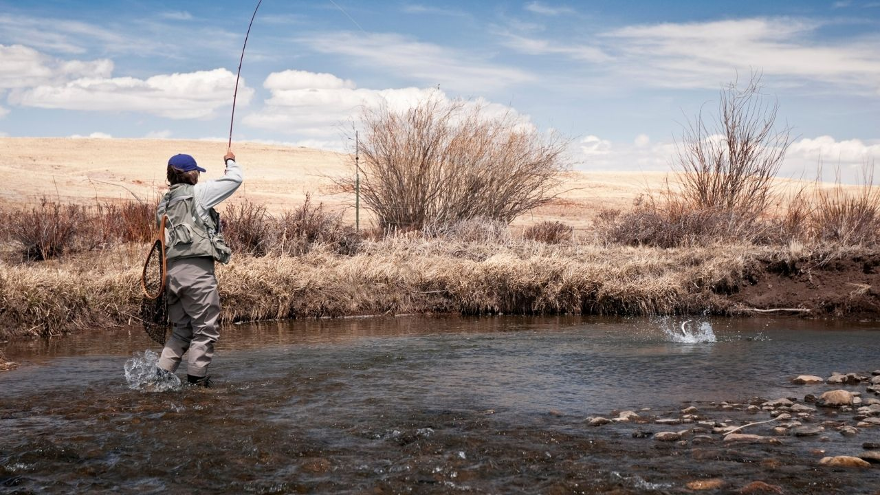Shorten the Fight With The Trout Trout Catch and Release Tips