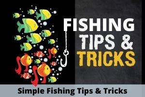 Simple Fishing Tricks And Techniques