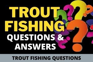 Trout Fishing Questions and Answers
