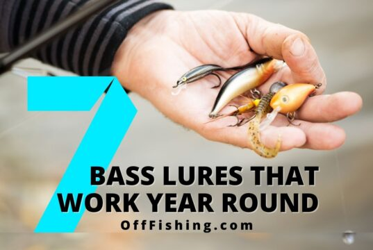 7 Best Bass Lures That Work Year-Round Lets Go Off Fishing