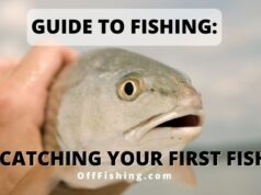 Guide to Fishing Catching Your First Fish Off Fishing