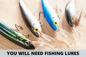 You Will Need Some Fishing Lures